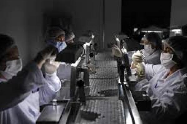 Instituto Butantan e Fiocruz ainda devem dados da vacina à Anvisa